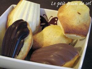 recettes  madeleines au chocolat