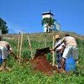 #SANTé Bio - Le Salvador bannit le Roundup de Monsanto et connaît des récoltes records