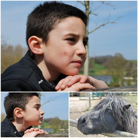 2010_04_11_zoo_de_Beauval25