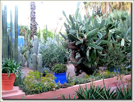 marrakech__103_