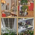HEDERA FLEURISTE DECORATEUR