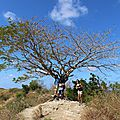 365 jours à Mayotte