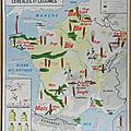 <b>Collection</b> ... Carte scolaire CEREALES et LEGUMES / La SEINE et ses AFFLUENTS