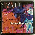 Birdbrain - Youth of America