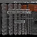 Cybercrime : Votre cyberprotection depuis 1999