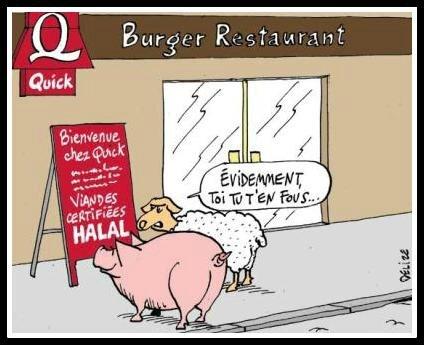 Quick halal