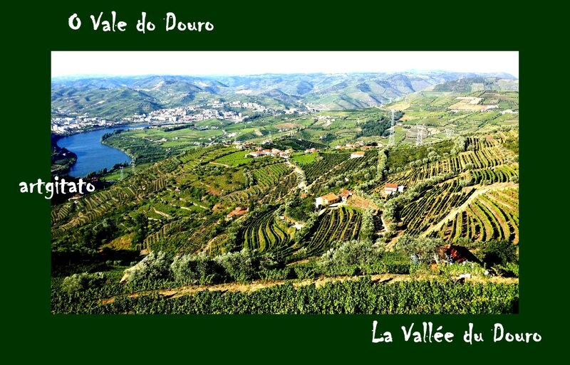 O Vale do Douro La Vallée du Douro Portugal Artgitato 8