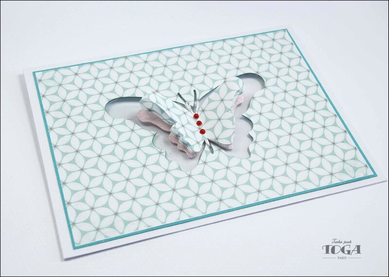 carte papillon jardin secret - DT Tacha 3p