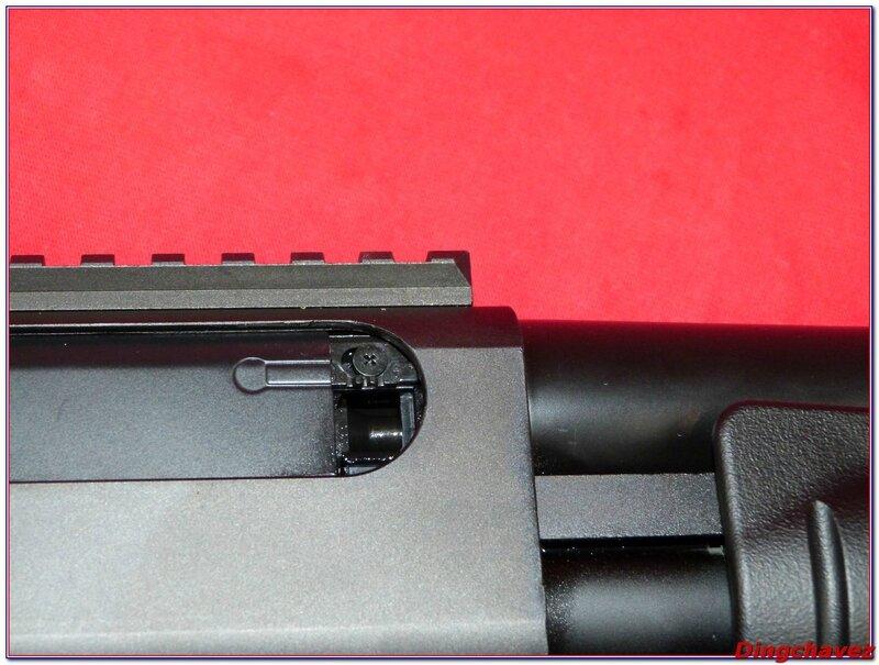 P1090028