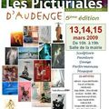 Les Picturiales d'<b>Audenge</b> - Exposition - Exhibition