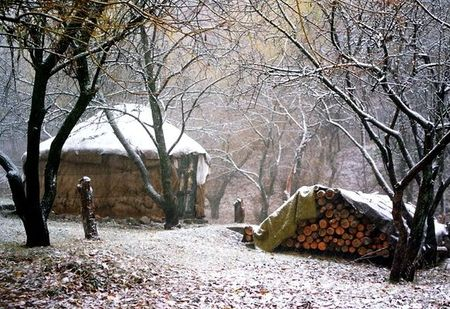 tas de bois pour yourte d'hiver