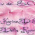 Interview <b>S</b>.C. Rose par KarineDS pour les Défis Romanesques.