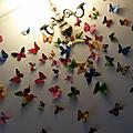 Ca <b>papillonne</b> un peu...beaucoup