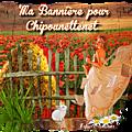 MA <b>BANNIERE</b> POUR CHIPOUNETTENET
