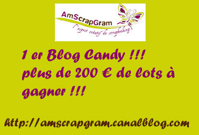 blogcandy_copie