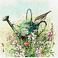 Les <b>plantes</b> <b>aromatiques</b> au jardin- partie 1