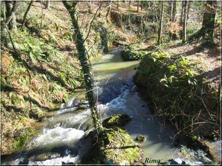 le_ruisseau