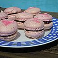 Macarons <b>Girly</b>