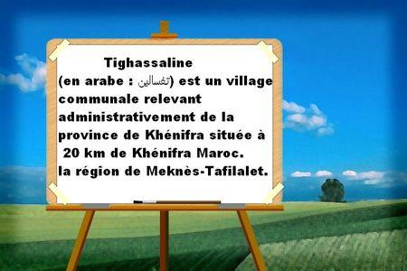Tighassalinne