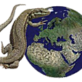 REPTILES FRANCE