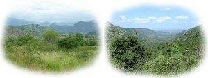 paysages_de_montagnes