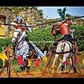 Entrainement joutes des chevaliers du <b>Château</b> de Talmont (Cie Capalle)