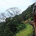 Détente puis joli train de Kandy à Galle et baignade nocturne