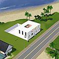 Les Maisons des Sims Fous