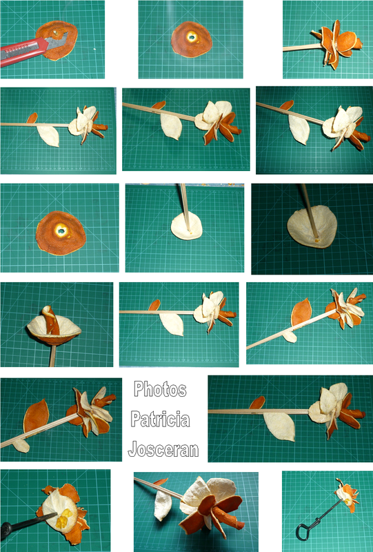 Page fleur orange 06