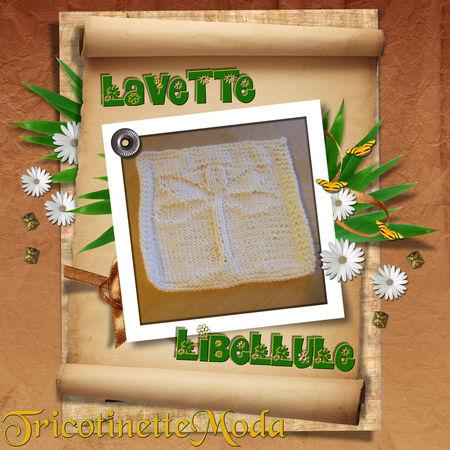 Lavette libellule 44460245_p