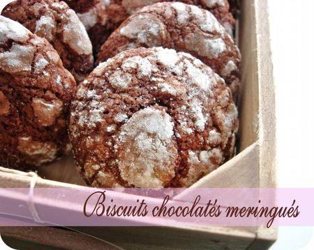 biscuits chocolatés (scrap4)