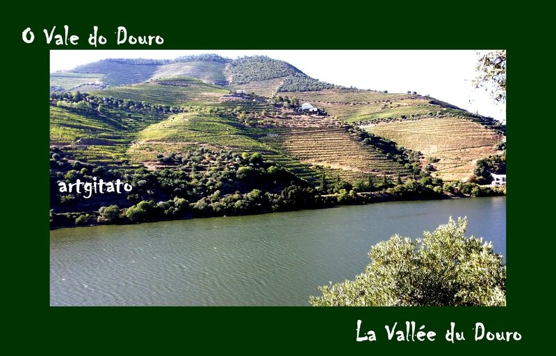 O Vale do Douro La Vallée du Douro Portugal Artgitato 4