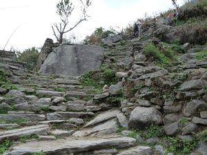 Trek Annapurna FZ28 - 1354