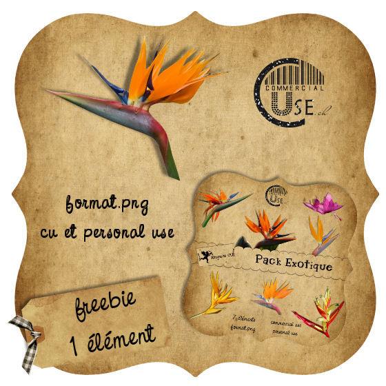 Les freebies d'Angélique 35502014