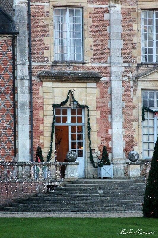 Château de la Ferté Saint Aubin (décembre 2015) #52