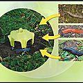 Vaso <b>Trap</b> - Piège Escargots et Limaces - <b>Trap</b> <b>Trap</b>