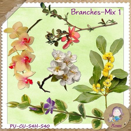 Branches_Mix1_preview_DSS