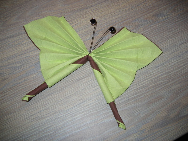 Pliage Serviette Papillon 2 Couleurs