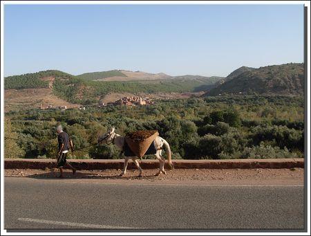 marrakech__319_