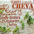 <b>Cheval</b> mon Ami 6)
