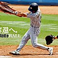 Une blatte de Baseball