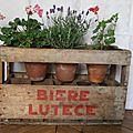 Ancien casier à bouteilles - Bière Lutèce