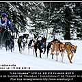 Courses de <b>chiens</b> de <b>traineau</b>