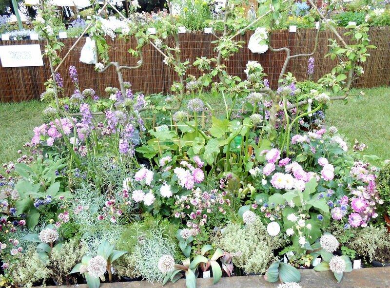 Ma journ e des plantes chantilly bienvenue chez mamie - Journee des plantes chantilly ...