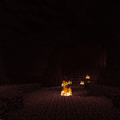 Saumon dans le nether