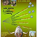 2013 - 14 Avril le grand dfi des <b>Vosges</b>