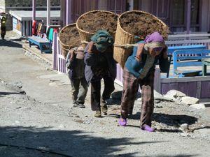 Trek Annapurna FZ28 - 0329