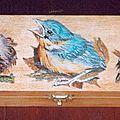 Les <b>oiseaux</b> et leurs nids