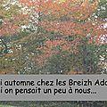 <b>Défi</b> automne 2014