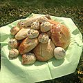 Scones (s.gluten et s.<b>caséine</b>)